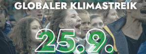 FFF Globaler Klimastreik